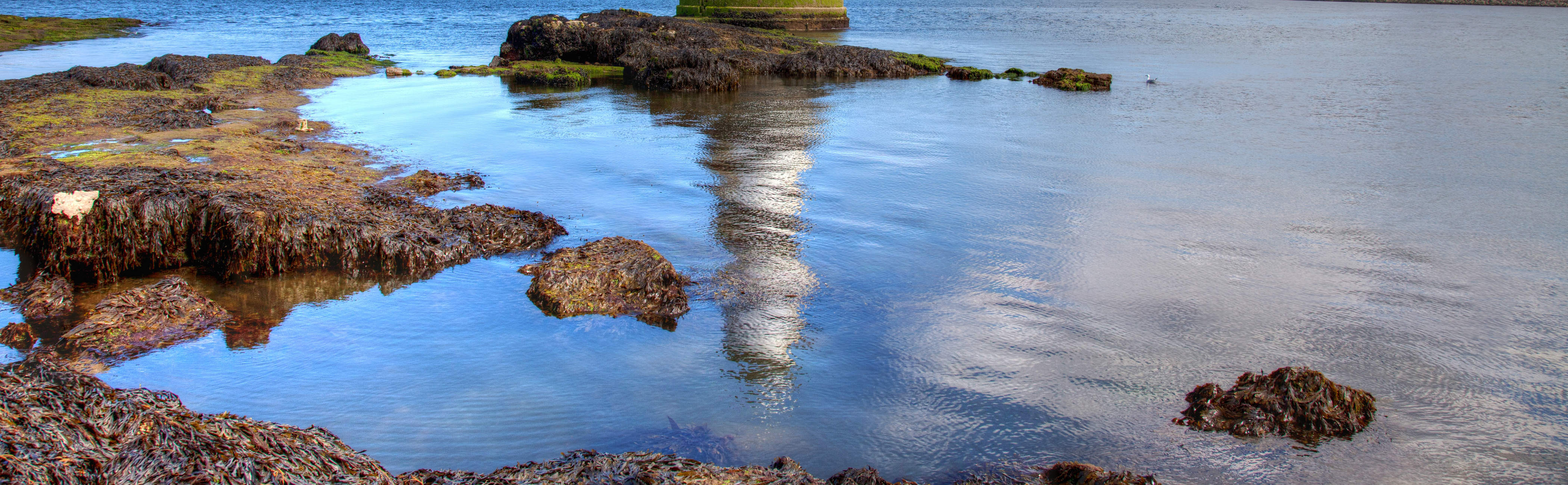 Tidal pools sit below the lighthouse.