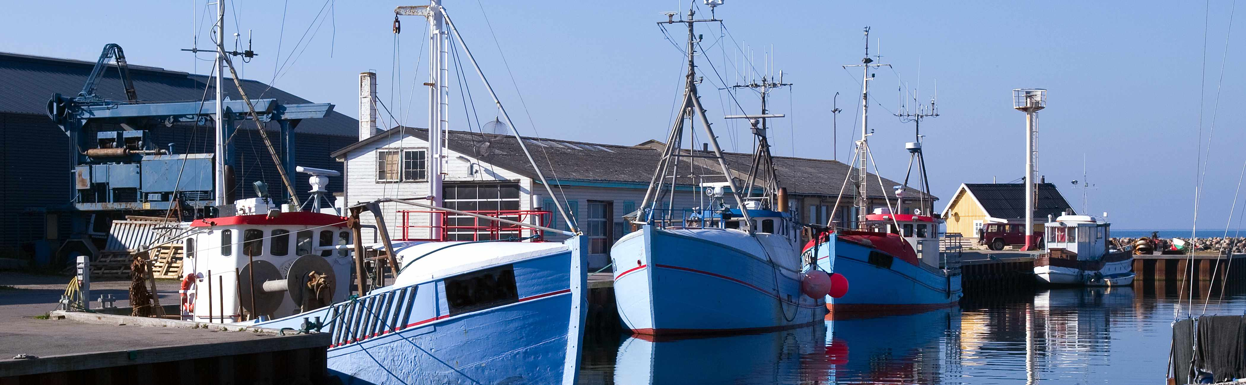 Day fishing boats moored in the harbour.