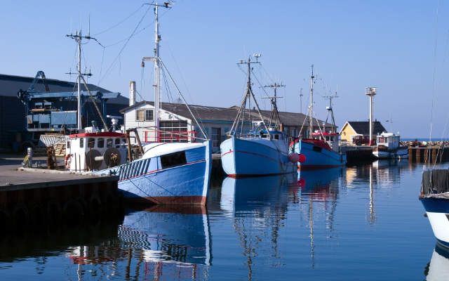 Day fishing boats tied up in harbour.